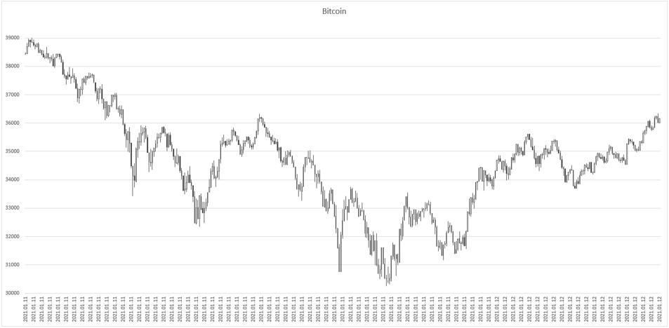 Bitcoin-Jan-12-2021-06-47-01-78-AM