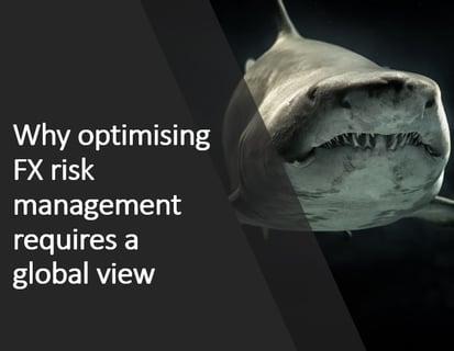 Shark Risk2